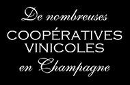 Coopératives viticoles Champenoises